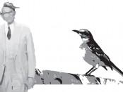 Illustration of Atticus and a mockingbird
