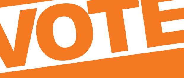 Image with the word vote displayed in an orange colour.